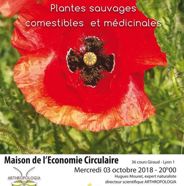 Conférence H.Mouret «Plantes sauvages, comestibles et médicinales»